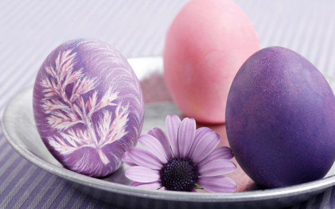 Art purple design on a Easter Egg - Happy Holiday