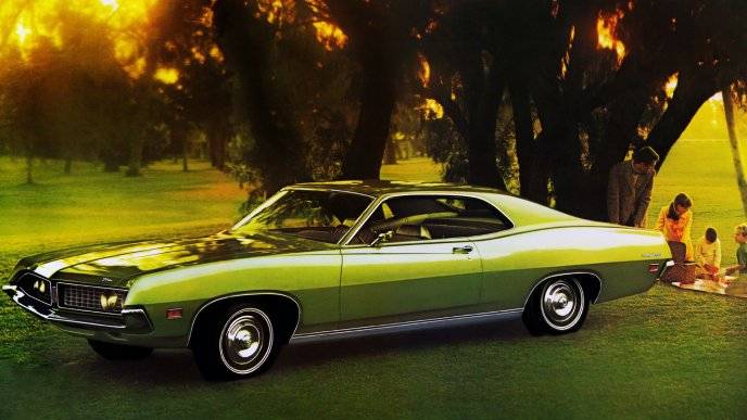Green Ford Torino 500 on field under trees