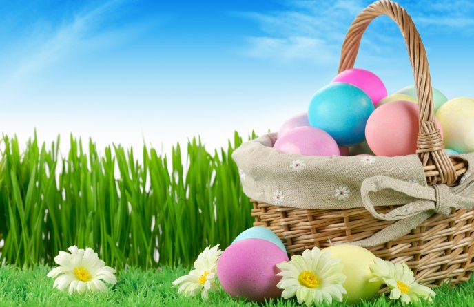 Easter basket full with coloured eggs - Happy Spring Holiday