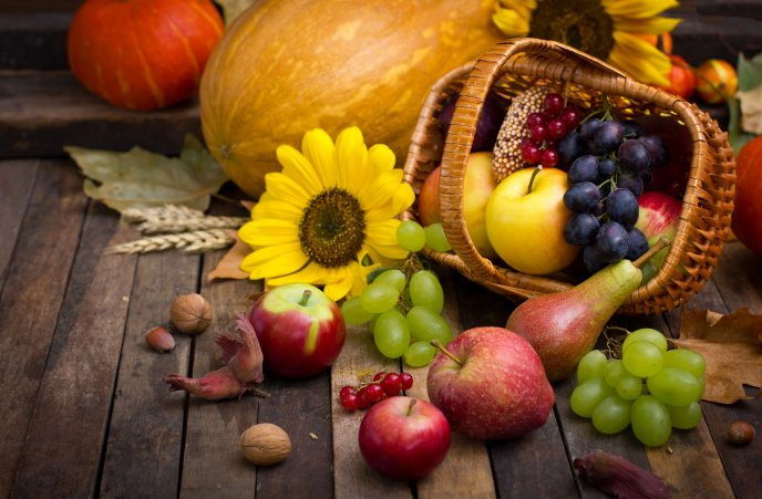 Basket full with delicious Autumn fruits-apples pears grapes