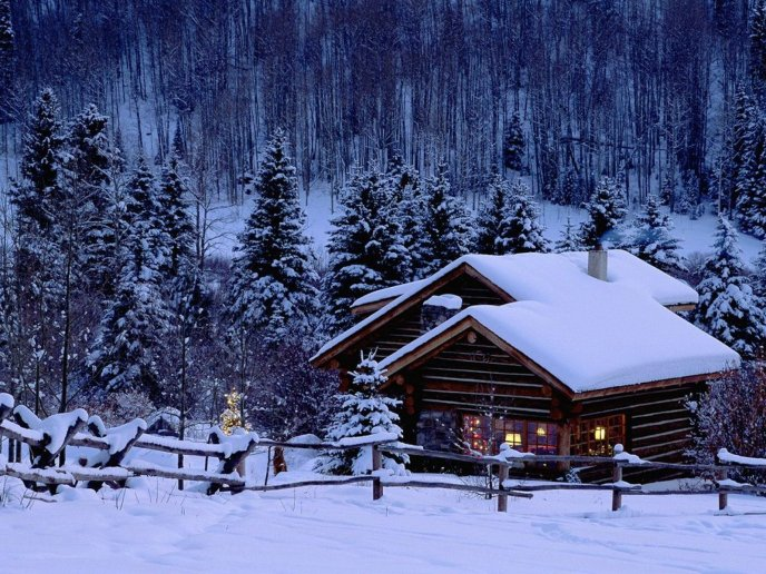 Wooden house in the middle of nature - White Winter season