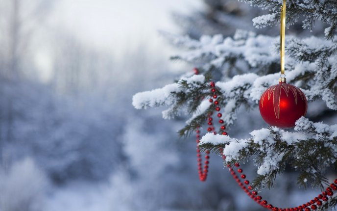 Red Christmas accessories in tree - White snow over nature