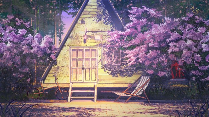 Small wooden house - Wonderful purple flowers