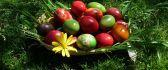 Painted eggs in a basket on the grass - Happy Easter Holiday