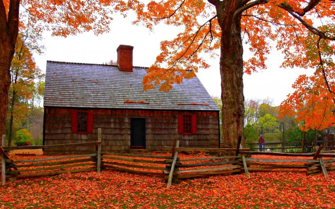 Old house cover with autumn leaves - HD wallpaper