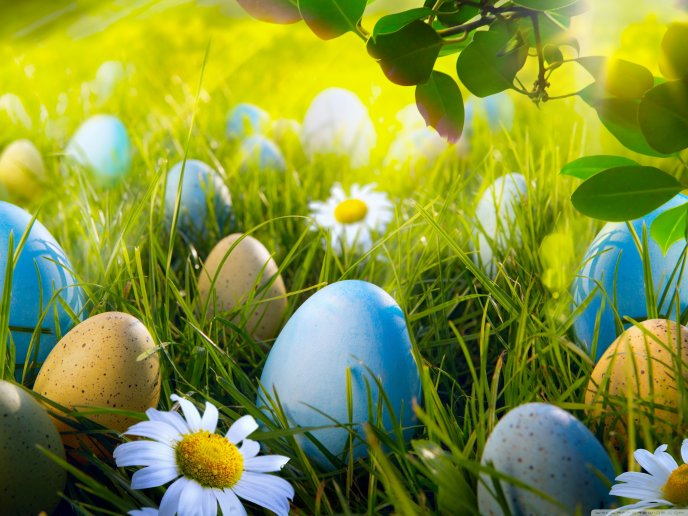 Easter eggs in the green Spring grass - Happy Holiday