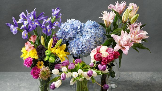 Wonderful spring flowers in vase - Happy Spring season time