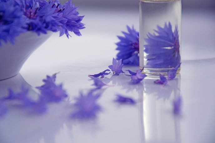 Cosmetic from essential oil - Purple water floral perfume