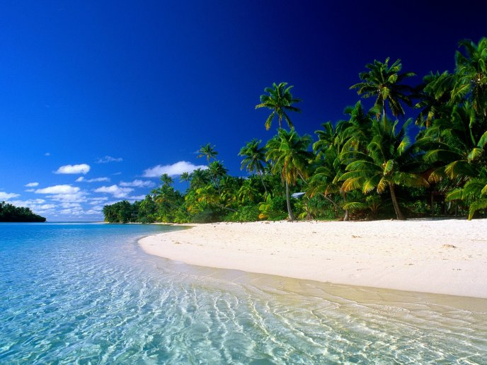Wonderful relaxing time on a exotic island - Summer Holiday