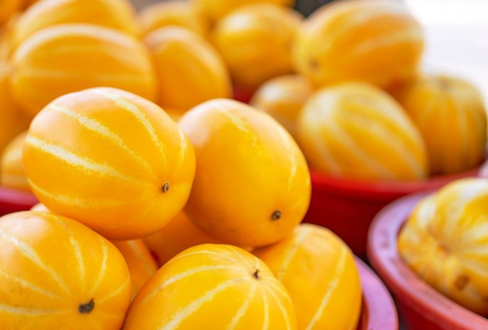 Yellow melon fruit - Exotic and tasty delicious